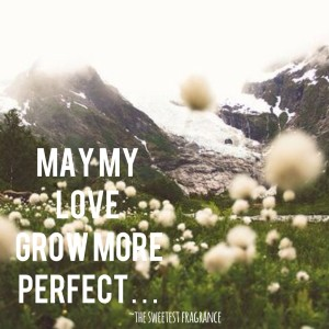 a may perfect lord