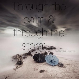 through the calm and through the storm blog