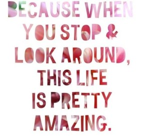because when you stop and look around life is pretty amazing