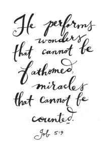 he performs wonders
