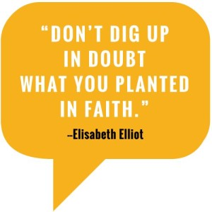 do not dig up in faith