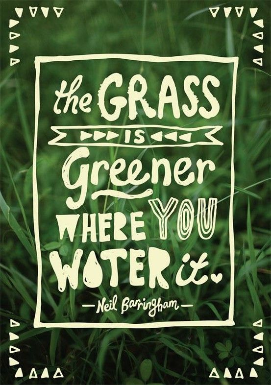 the grass is greeener